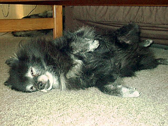 Ein sehr müdes altes Mädchen